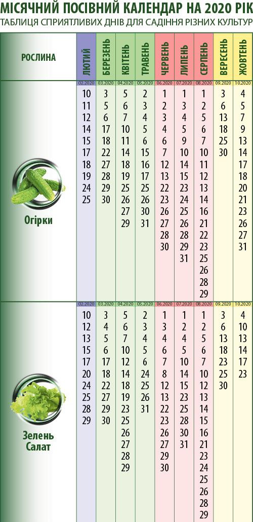 Посівний календар: огірки, зелень (салат), помідори, перець, баклажани