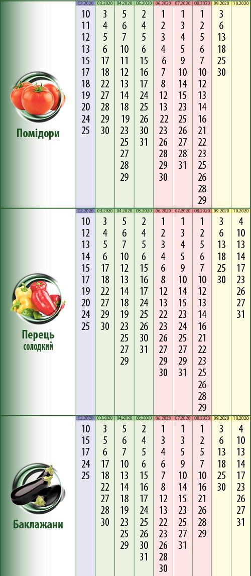 Посівний календар: кабачки (гарбузи), картопля, редиска (редька), морква (буряк), кавуни (дині)