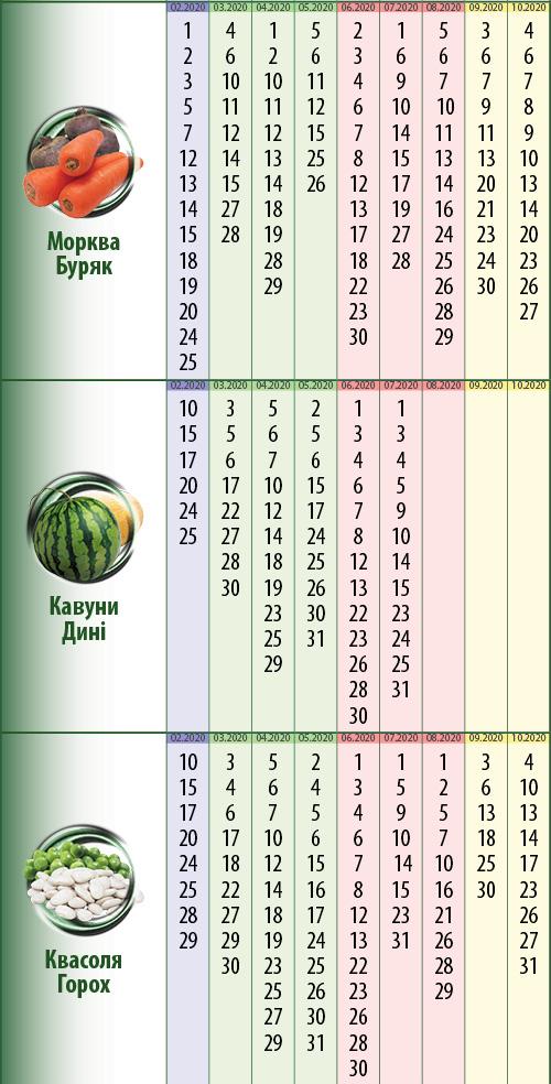 Посівний календар: петрушка, квіти
