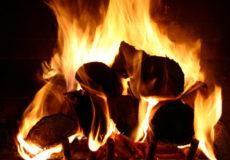 Шепетівські лісівники забезпечать теплом школярів