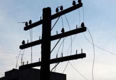 Вкрали 1,5 км телефонного кабелю