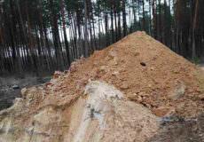Припинили незаконний видобуток унікального мінералу на землях Шепетівського військового лісгоспу
