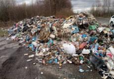 Чи сміття зі Львова?