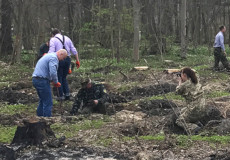Посадовці Шепетівщини взялися насаджувати ліс