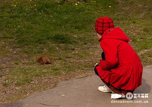 У Шепетівському парку пахне фарбою і бігають білочки