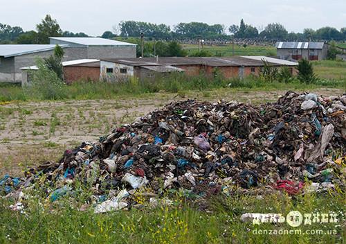 У Шепетівку сміття підкидають щовихідного