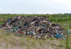 Екологічна Інспекція взялася за побутові відходи на полігонах та стихійні сміттєзвалища