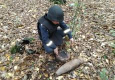 Артилерійський снаряд і протитанкову міну знайшли шепетівські селяни
