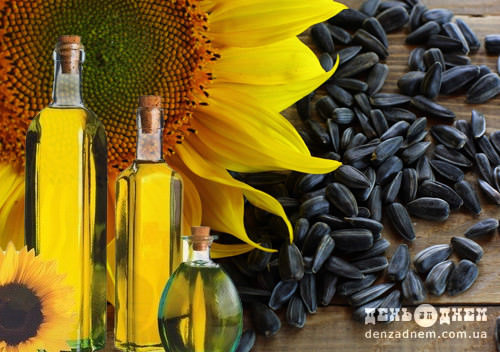 У Старокостянтинові вироблятимуть олію