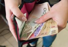 Шепетівські посадовці з'ясовували, чи сільські працівники отримують мінімальну заробітну плату
