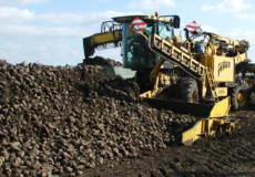 Аграрії Хмельниччини мають найвищий показник урожайності в України
