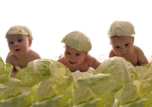 У січні на Хмельниччині народилося понад 900 немовлят