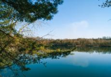 Чи процвітає нині зелений туризм у Грицеві?