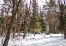 У Шепетівці вандали розкрали огорожу з місця масового поховання