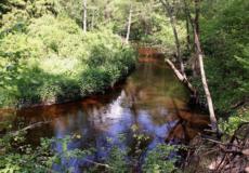 Чому на Шепетівщині назвали річку Кривавою?