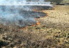 Через необережне поводження з вогнем горіла суха трава