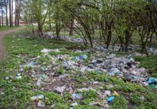 Кинув сміття у непризначеному для цього місці — стань «зіркою ютуба»