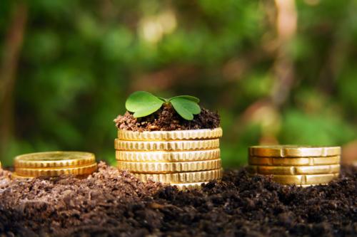 На Хмельниччині аграрій не сплатив 2,5 мільйони гривень податку