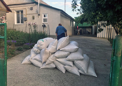Жнива у розпалі: ТОВ «Агрофірма «Подільський аграрій» збирає свій перший врожай