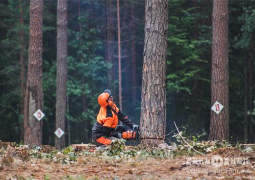 Шепетівський лісівник у трійці кращих вальників лісу Хмельниччини