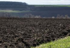 На Полонщині орендар взяв із порушенням законодавства майже 500 гектарів землі