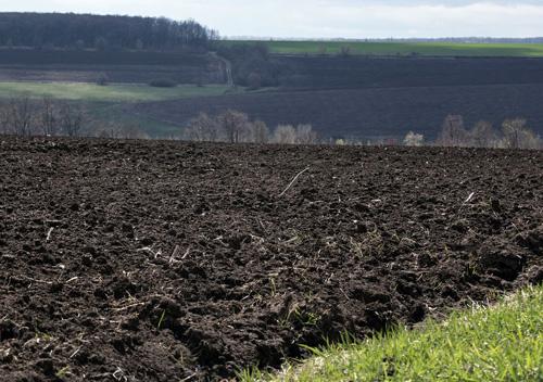 ОТГ після виборів отримають більше 2-х мільйонів гектарів сільгоспземель