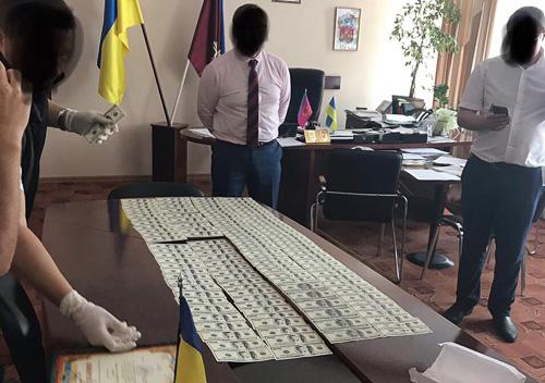 Високопосадовець з Полонщини відповість за майже півмільйонний хабар