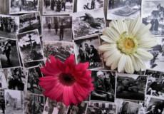 Як здійснювалося правосуддя на Хмельниччині в 1944 році?