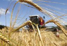 Губернатор Хмельниччини привітав аграріїв із гарними показниками