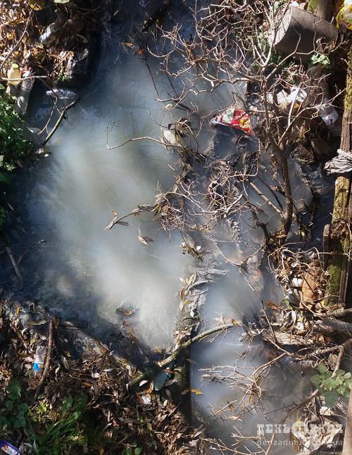 Сморід від річки Косецької спричинили фекалії