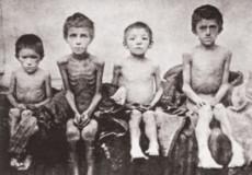 Трагічні долі селян в селі Плесні у роки Голодомору