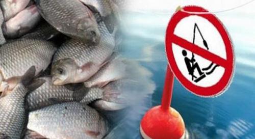За вилов риби в річці Горинь ізяславчанин сплатить штраф