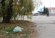 У Шепетівці адміністративно-комунальна інспекція «воює» за чистоту вулиць