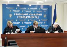 ТОВ «Шепетівка Енергоінвест» програло апеляцію щодо розірвання концесії