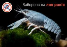 З 15 грудня на Хмельниччині забороняється ловити раків