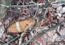 У лісопосадці на полі виявили артснаряд часів Другої світової війни