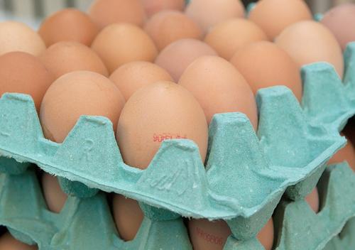 Аграрні підприємства Хмельниччини цьогоріч скоротили виробництво яєць