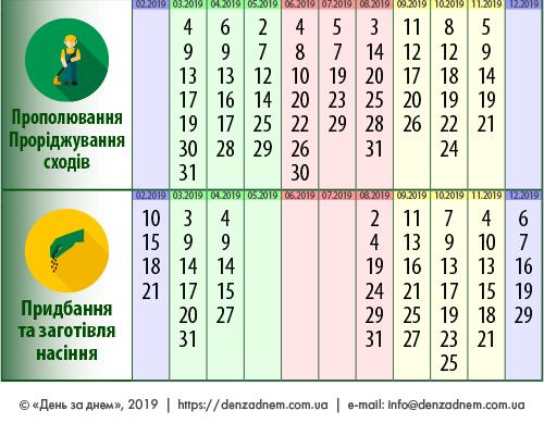 Посівний календар: прополювання, проріджування сходів, придбання та заготівля насіння