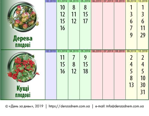 Посівний календар: дерева, кущі
