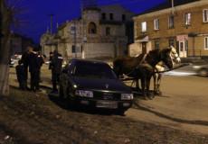 У Шепетівці чоловік викрав пару коней та наскочив на Audi