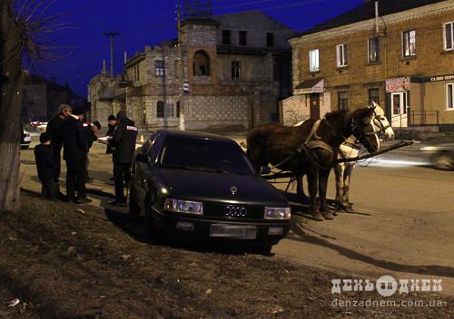 Шепетівському конокраду присудили 3 місяці арешту