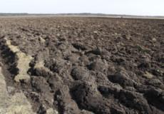 В Ізяславському районі припинили незаконне використання 317 гектарів землі