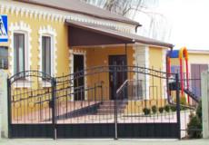 У Шепетівського центру реабілітації для дітей з інвалідністю намагалися викрасти поні