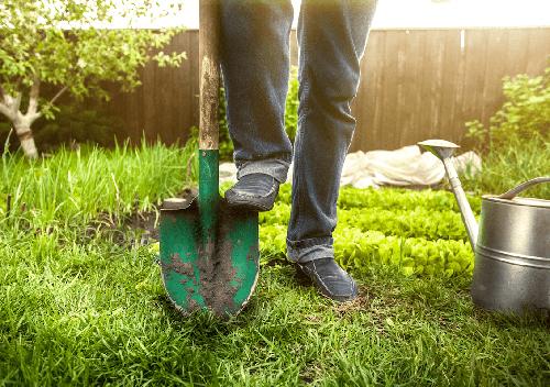 Треба скопати город: за яку суму готові шепетівчани надавати такі послуги