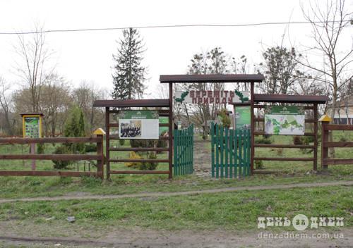 Чи все так погано в селі Пліщині?