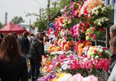 Замість штучних квітів — живі насадження: шепетівчани готуються до Провідної неділі