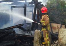 На Ізяславщині розрядом блискавки знищено тонну кормів