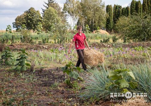 Перманентне господарювання дозволяє використовувати природні ресурси й отримувати високі доходи від землеробства