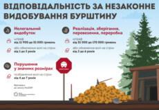 Легалізація видобутку бурштину: нові ліцензії та штрафи