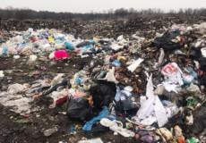 Львівське сміття знову підкинули Шепетівці